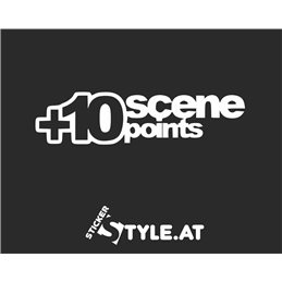 Scene Points