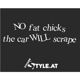 No Fat Chicks Crazy