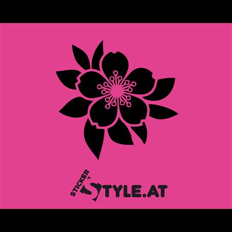 Blume 12